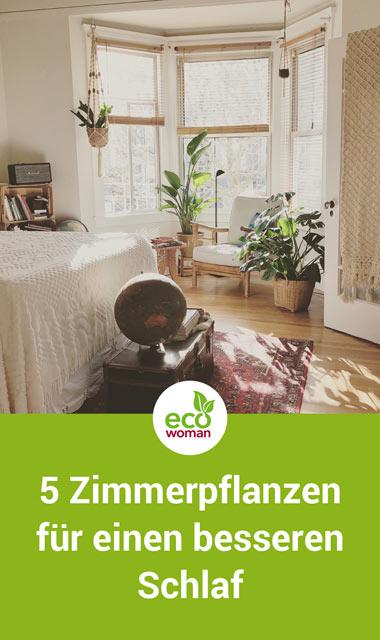 5 Zimmerpflanzen für einen besseren Schlaf