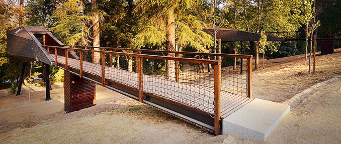 Willkommen im Tree Snake House. Eine Brücke führt in das moderne Konstrukt. Foto: © Ricardo Oliveira Alves