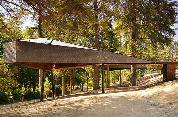 Fasznation Baumhaus: Tree Snake Houses in Portugal