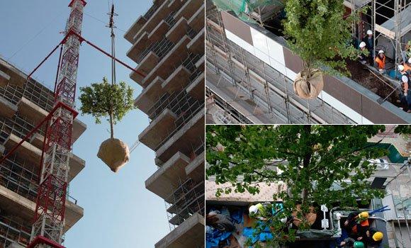 Der erste vertikale Wald der Welt: Einmalige Gebäude bald bewohnbar