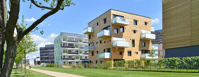 Das Woodcube Holzhaus ist auffällig, doch keineswegs ein Störfaktor © IBA Hamburg GmbH / Martin Kunze