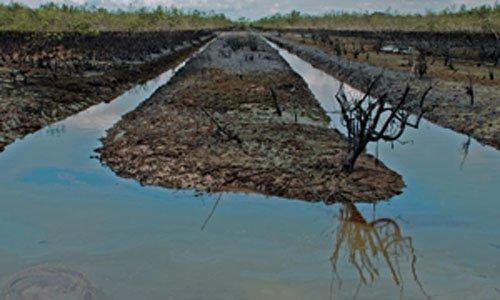 Weltweit schlimmste Ölkatastrophe im  Nigerdelta