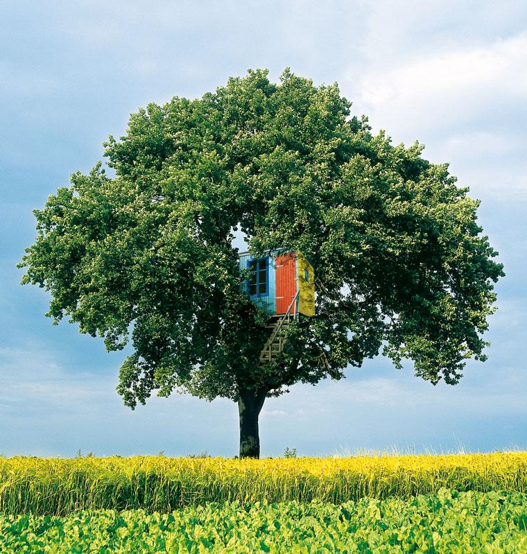 Baumhaus mit natuerlicher Farbe