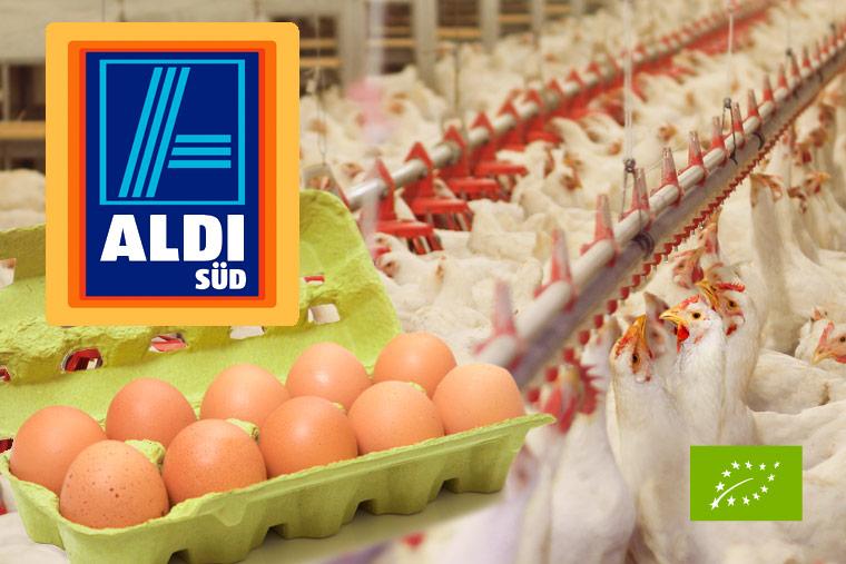 Bio-Eier von ALDI Süd entsprechen nicht den Richtlinien für Bio-Produkte