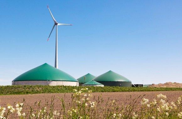 Biogasanlage in Worms: Bakterien zur Stromgewinnung