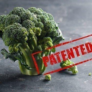 Keine Patente mehr auf Obst, Gemüse und Tiere!