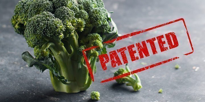 Patentamt trifft Entscheidung zu Biopatenten