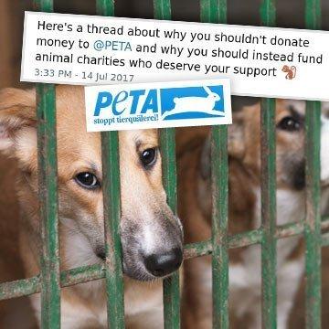 Unglaublich: PETA tötet Tiere und nennt es Tierschutz!