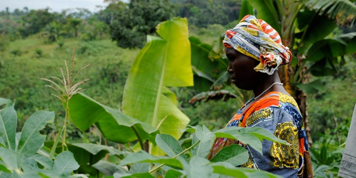 Ein nachhaltiges Projekt für Frauenrechte