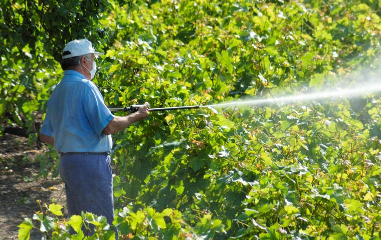 Gerade erst hat die WHO das Pflanzenschutzmittel Glyphosat als ?wahrscheinlich krebserregend? eingestuft