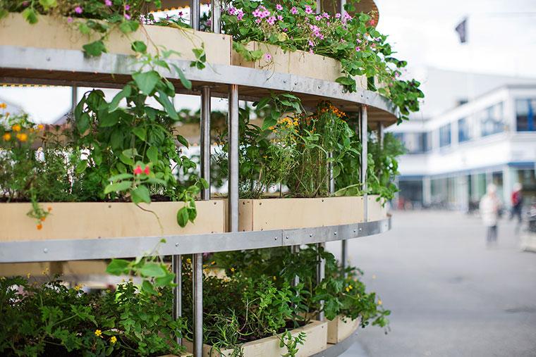 Kräuter- und Pflanzengärten mitten in der Stadt.