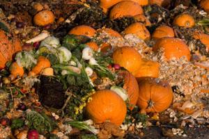Lebensmittel_im_Müll