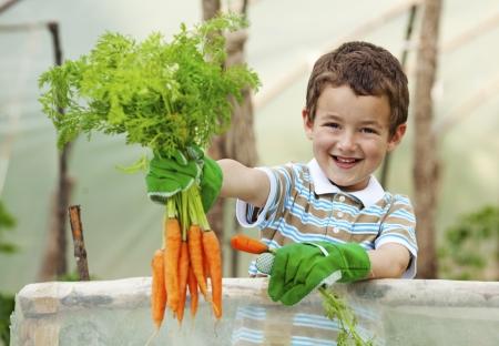 Lernort Bauernhof: Kinder, Landwirtschaft, Lebensmittel und Nachhaltigkeit