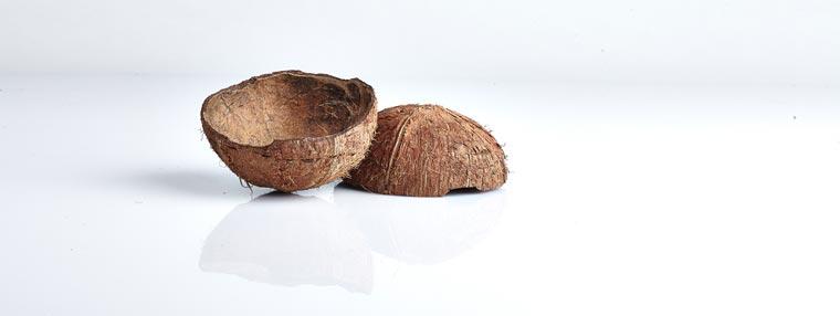 Kokosnussschalen enthalten sehr viel Energie