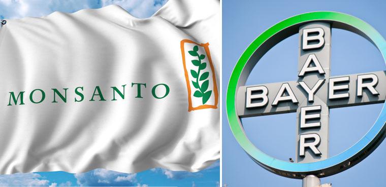 Bayer kauft Monsanto: das Ende der ersehnten Agrarwende?