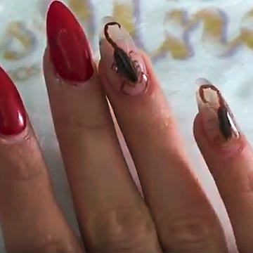 Perverser Trend: Nailart mit echten Skorpionen