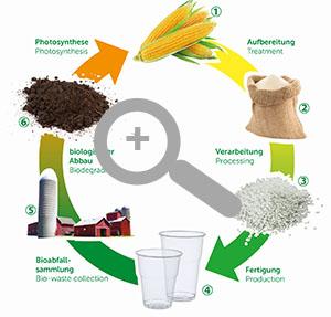 Der Kreislauf ist leicht erklärt und äußerst umweltfreundlich © PAPSTAR