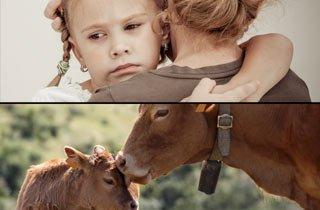 "PETA-Kampagne ""Goodbye Milch"": Abschied nehmen tut weh"