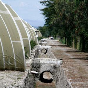 Schnittblumen_Kenia_Wasserversorgung