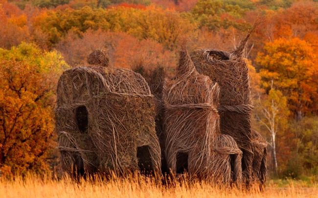 Stickwork kreiert nachhaltige Kunst aus der Natur