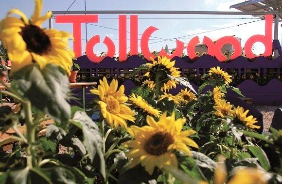 Sommer Kulturfestival Tollwood in München bietet Theater, Musik, Kunst, Toleranz & Umweltschutz