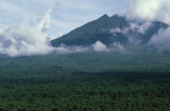 Vorerst keine Ölbohrungen: Etappensieg für Virunga