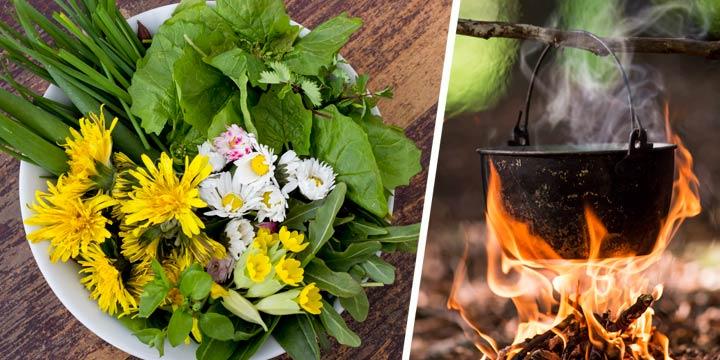 Köstliche Naturküche für Outdoor-Fans