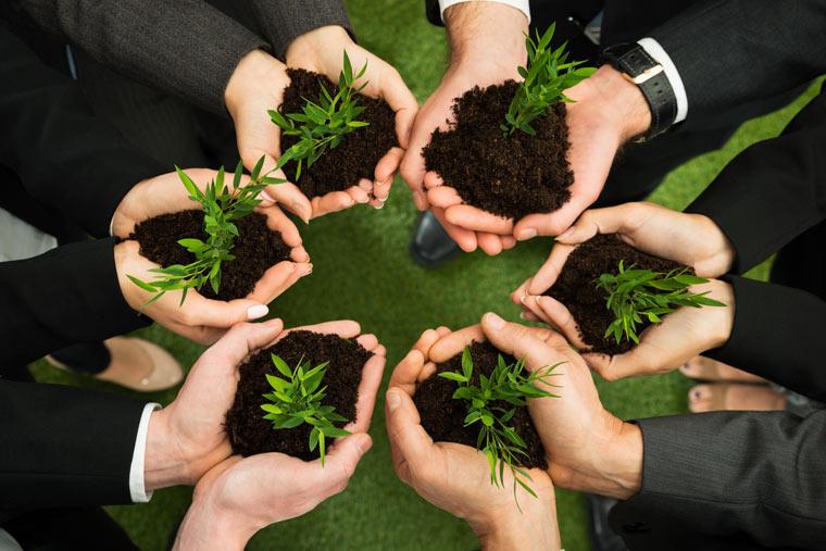 Sechs Start-ups kämpfen um den begehrten Green Alley Award für eine grüne Wirtschaft
