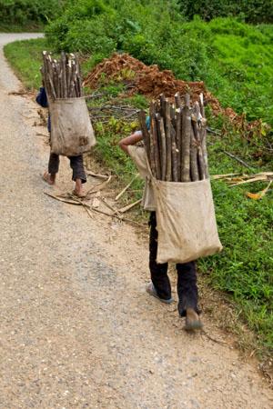 Diese Jugendlichen in Laos tragen das Feuerholz vor dem Monsun-Regen ©iStockphoto