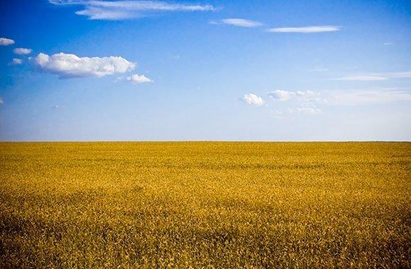 Landgrabbing in Osteuropa: Das Geschäft mit Ackerland