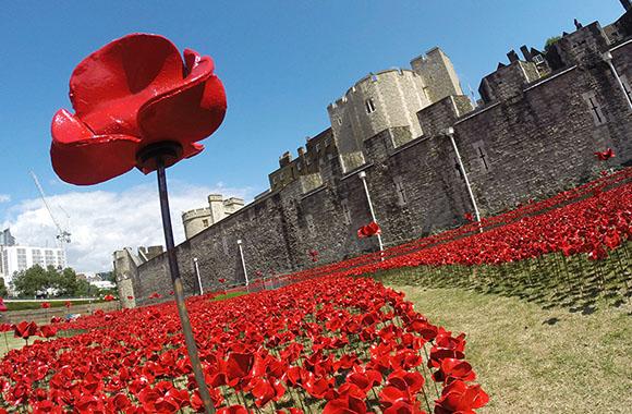 London gedenkt den Gefallenen mit poetischem Blütenmeer