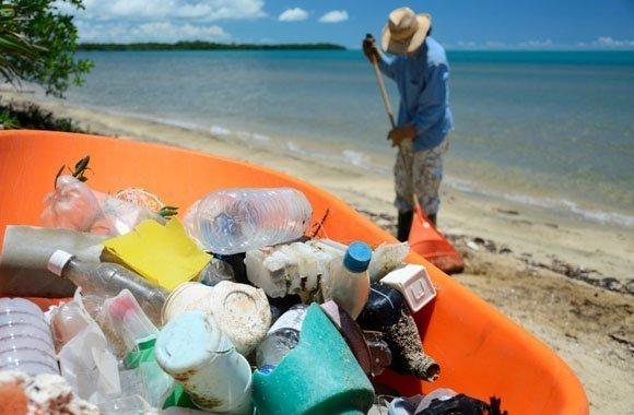 Plastikmüll: Gefahr für Ozeane, Tiere und Menschen