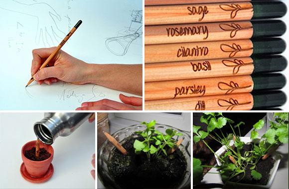 Upcycling-Pflanzen: Sprout lässt Kräuter aus Bleistiften sprießen