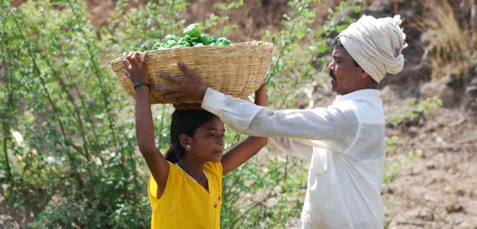 Diese Tochter hilft ihrem Vater bei der Ernte ©iStockphoto
