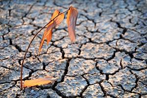 Die Klimaerwärmung schreitet weiter voran ©iStock