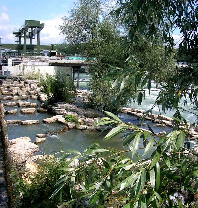 Der Fischpass in Rheinfelden ist ein gelungenes Vorbild für ein nachhaltiges Wasserwerk ©NaturEnergie+