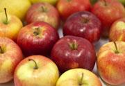 Alte Apfelsorten Pinova