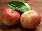 Alte Apfelsorten Renette