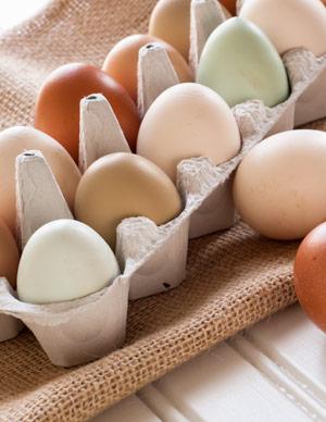 Wenn Sie Fleisch, Fisch, Milchprodukte und Eier essen, sollten Sie bewusst zu Bioprodukten greifen