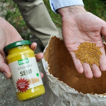 Köstlicher Bio-Senf aus der Region