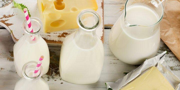 Biomilch und Biomilchprodukte - Rezepte, Tipps und Infos