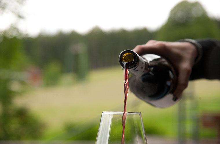 Bei der Wahl der besten Bio-Weine des Jahres steht der Geschmack im Vordergrund. ©Jürgen Schmücking