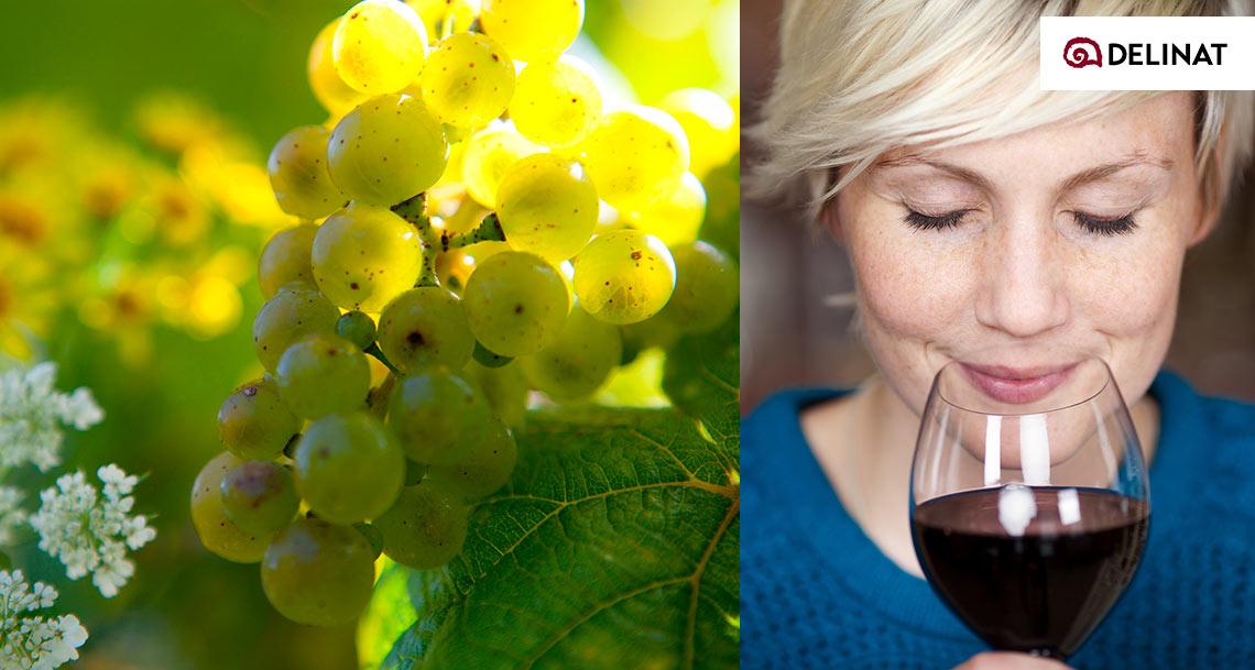Delinat Wein