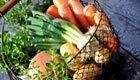 Saisonale Lebensmittel für gesunde und nachhaltige Ernährung