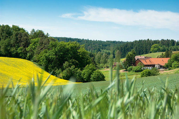 Die Ehrensberger Farm in Oberbayern.