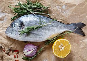 Alternative_Fisch