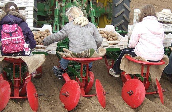 Bauernhof als Klassenzimmer auf der Land und Genuss