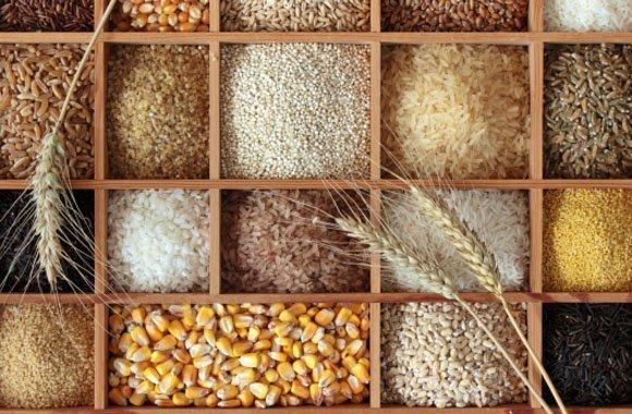 Alte Getreidesorten im Trend