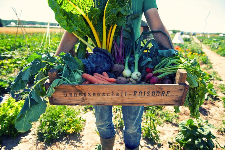 Supermarkt-Boykott – hier schmeckt's besser!