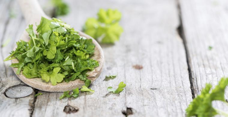 Die meisten Kräuter behalten eingefroren ihre grüne Farbe und sind sogar aromatischer als getrocknete.